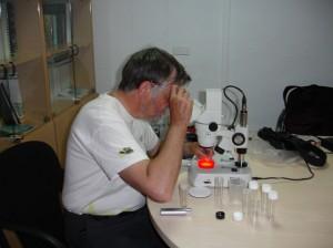 nick al laboratori